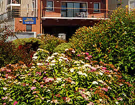 Arus Grattan Self Catering Holiday Apartments - Front Facade